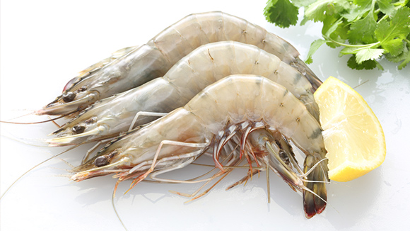 How to buy fresh prawns
